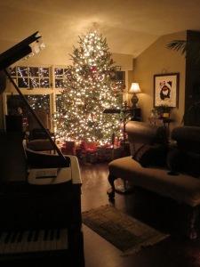 christmas-2014-1421